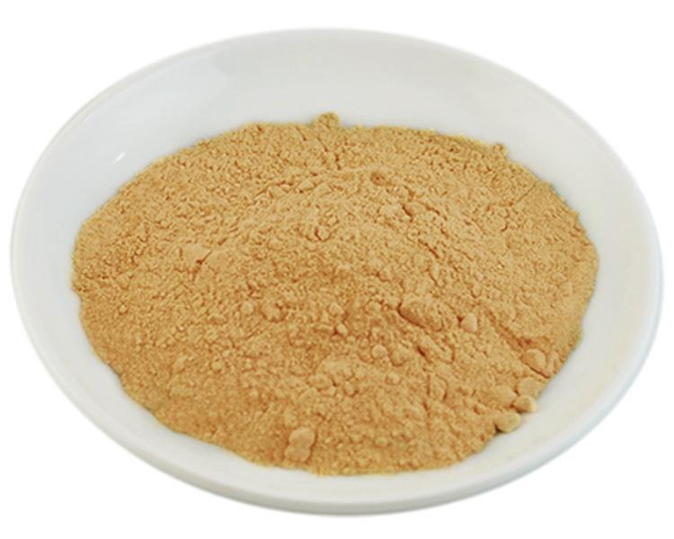 Papaya Fruit Extract Powder