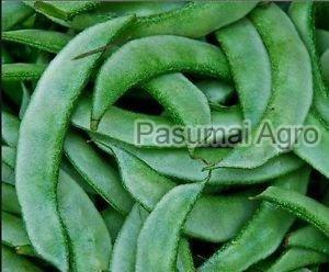 Fresh Flat Beans