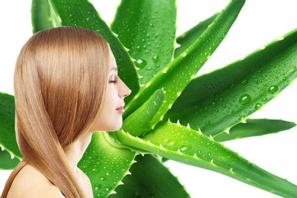 Henna & Aloe Vera Shampoo