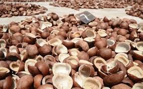 Copra Coconut