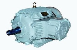 Flameproof Induction Motor