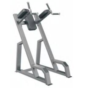 Vertical Knee Raise and Dip Machine