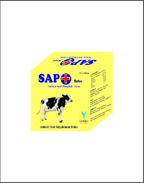 SAP Plus Bolus