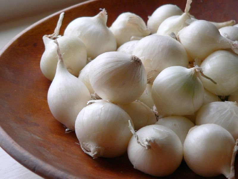 Small White Onion