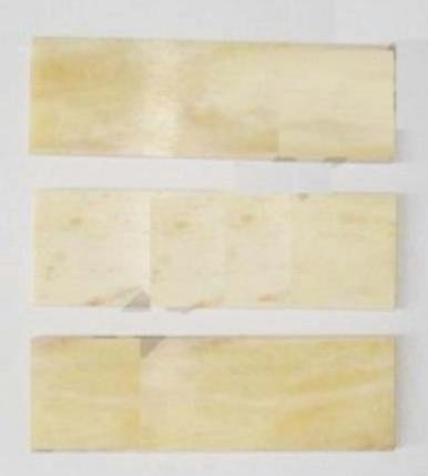 Buffalo Bone Scales