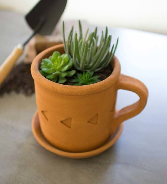 Clay Cup Planter