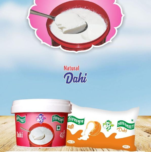 Shivamrut Natural Dahi