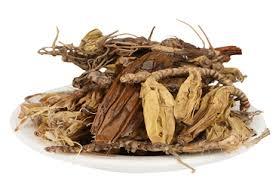 Jivanti Herb