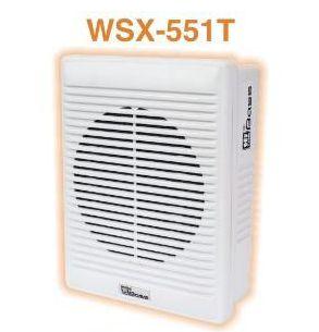 Wall Speaker