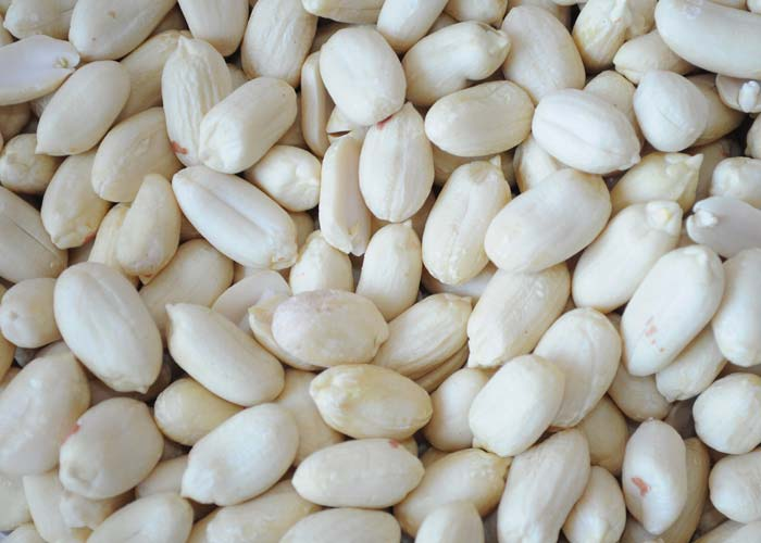 Blanched Groundnut Kernels
