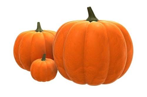 Fresh Pumpkin