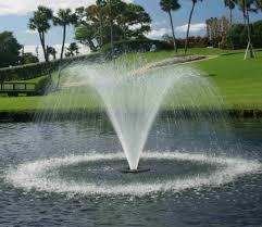 Tulip Water Fountain