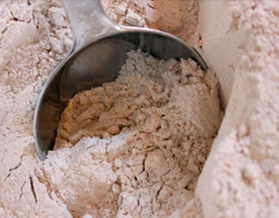 Samba Wheat Flour