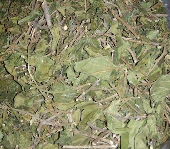 Dried Gurmar Leaves