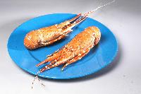 Whole Cooked Rock Lobster