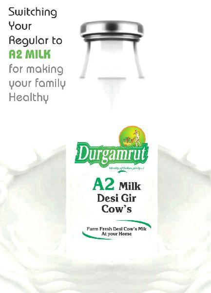 Desi Gir Cow Milk