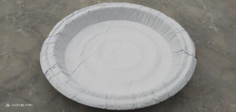 White Paper Plate