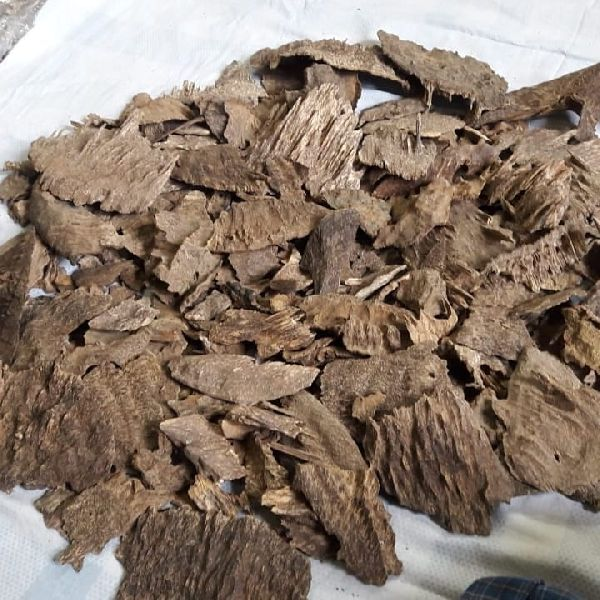 agarwood chip 02