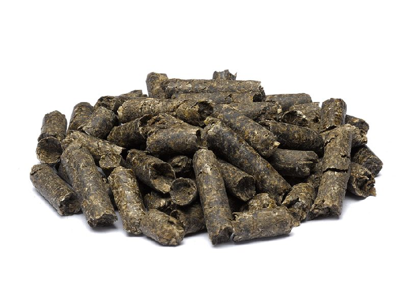 Special Cattle Feed Pellets - Manufacturer Exporter Supplier in