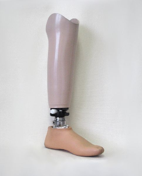 Symes Prosthesis