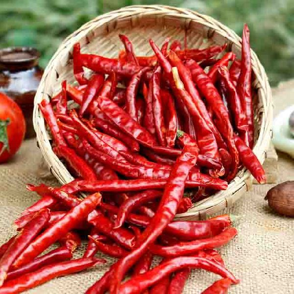 Sun Dried Red Chilli