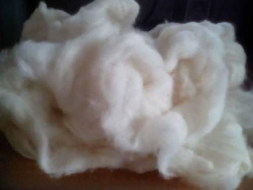 Washable Raw Cotton
