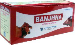 Banjhna Capsules 01