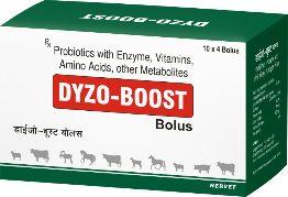 Dyzo-Boost Bolus 01