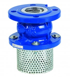 Flanged Foot Valves