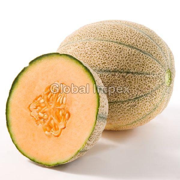 Fresh Rockmelon