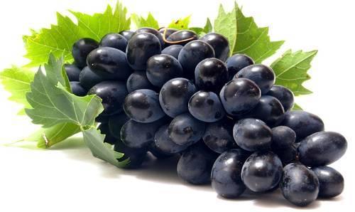 Fresh Seedless Black Grapes