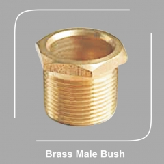 Brass Male Bush