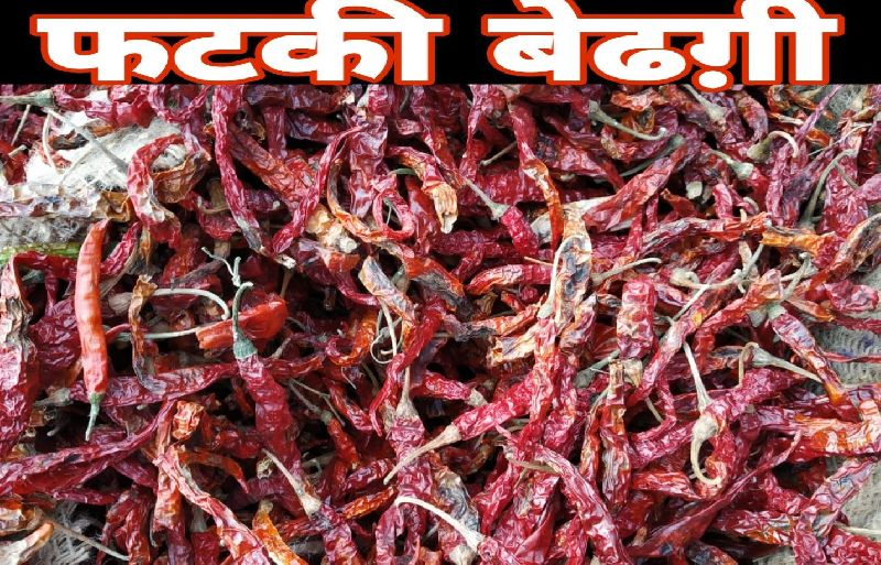 Byadgi Fatki Dired Red Chili