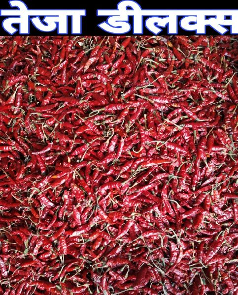 Teja Deluxe Dried Red Chilli