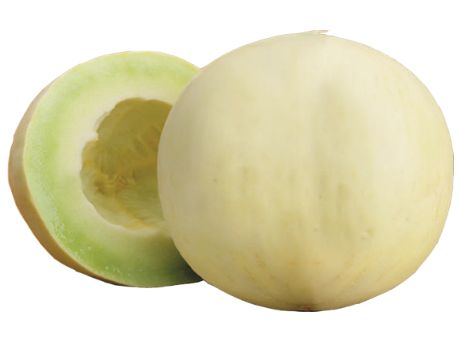 Fresh Honeydew Melon