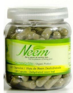Neem Capsule