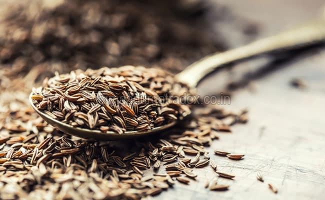 Fresh Natural Cumin Seeds