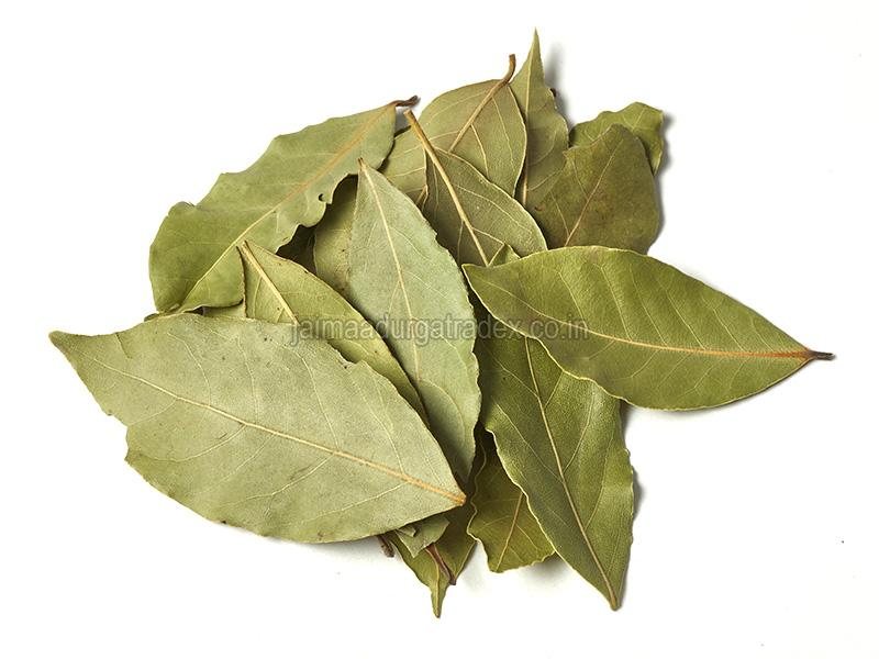 Indian Bay Leaf