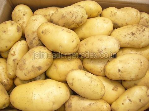 Indian Potato