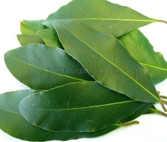 Organic Fresh Bay Leaf