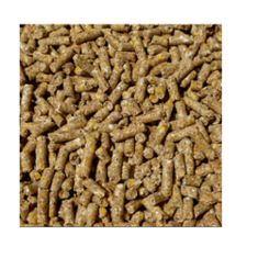 Cattle Feed Briquette