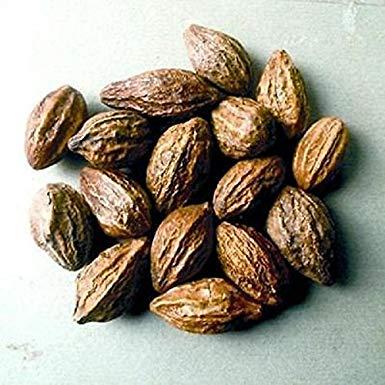 Dried Harad