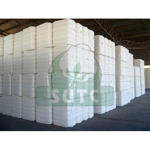 Cotton Bale 01