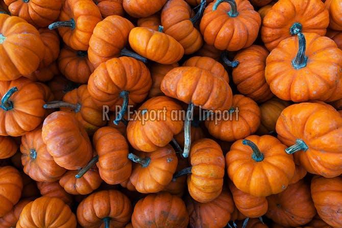 Fresh Brown Pumpkin