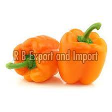 Fresh Orange Capsicum