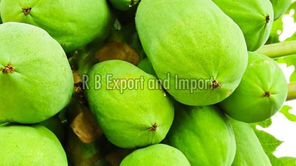Fresh Raw Green Papaya