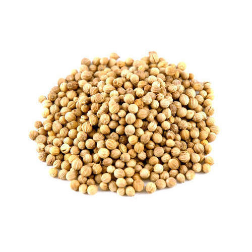 Loose Coriander Seeds