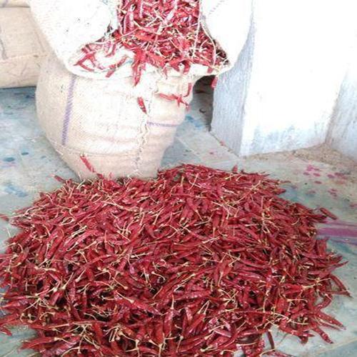 Pure Red Chilli