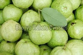 Natural Green Guava