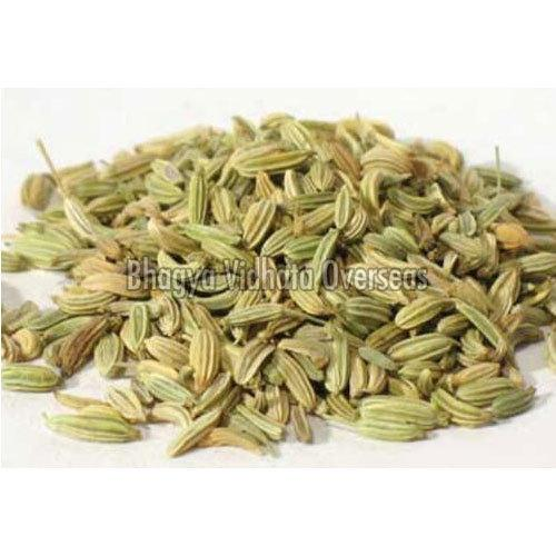 Organic Fennel Seeds